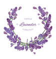 Lavender flowers wreath vector image