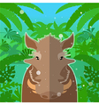 Wart-hog on the Jungle Background vector image