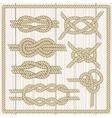 Sailor knot set vector image