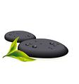 black pebbles vector image vector image