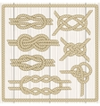 Sailor knot set vector image