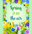 flowers bunch for spring time greeting card vector image