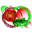 fresh tomatoes vector image vector image