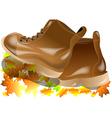walking boots vector image