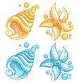shell and starfish vector image