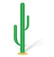 cactus 01 vector image