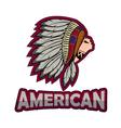 Apache Head professional logo vector image