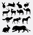 various mammal animal silhouette vector image