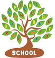 Tree school vector image vector image