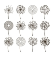 Dandelion flower icons Dandelions fluffy seeds vector image