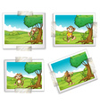 Photographs and monkeys vector image vector image