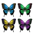 colorful butterflies vector image