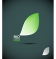 Bio logo green leaves of a tree The concept of vector image