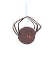 cute cartoon hanging spider character vector image