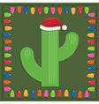 christmas cactus vector image vector image