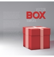 Realistic 3D Present Gift Box Birthday vector image