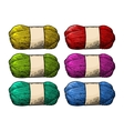 Det color roll yarn with woolen thread knitting vector image