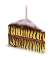 Piece of cake with candle vector image
