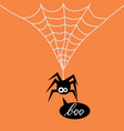 cute spider on a web vector image