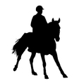 jockey on a horse vector image vector image
