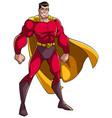 superhero standing tall vector image