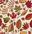 Autumn pattern Pattern of autumn leaves Red yellow vector image