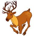 cute alive deer running vector image