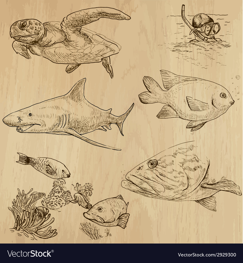 Underwater sea life set no1  hand drawn vector