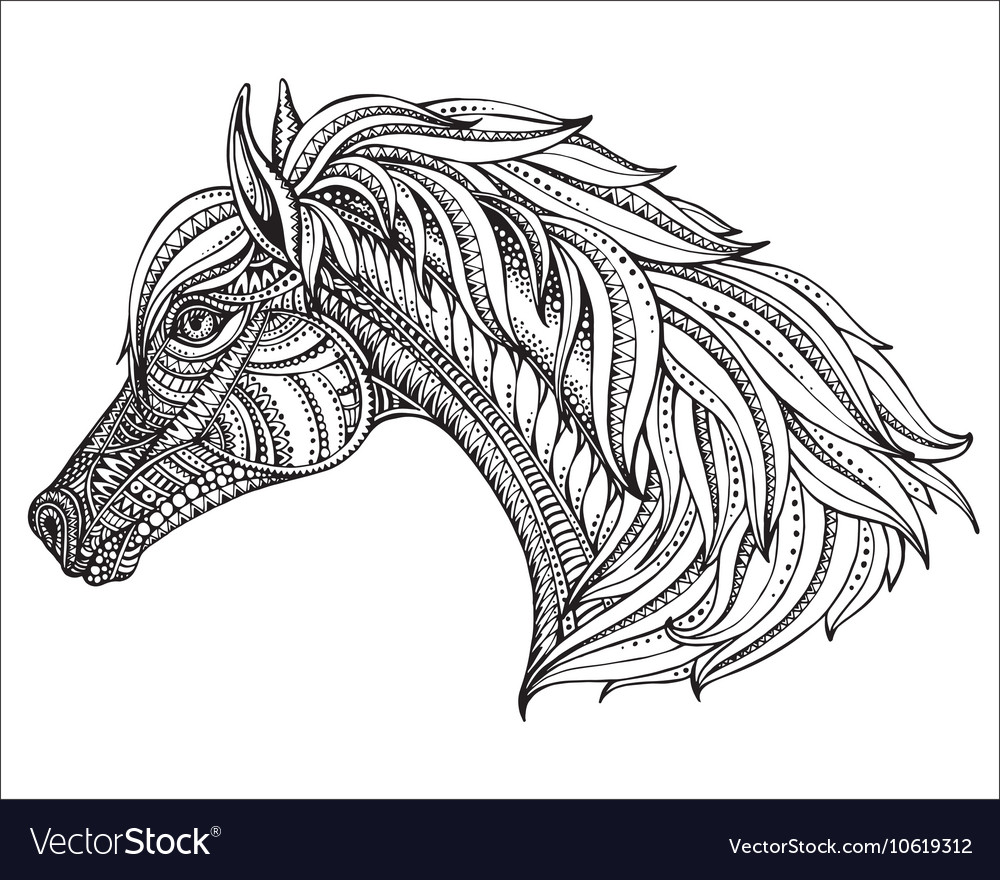 Hand drawn head of horse in graphic ornate style vector