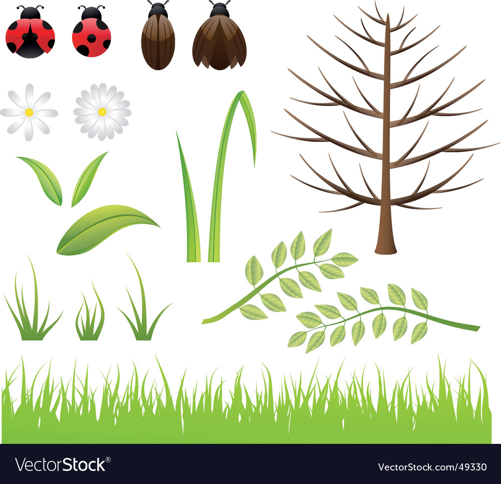 Design elements spring nature vector