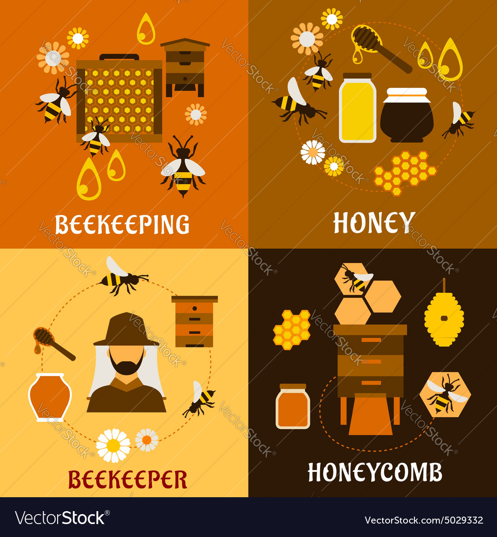 Honey concept with bees beehives and honeycombs vector