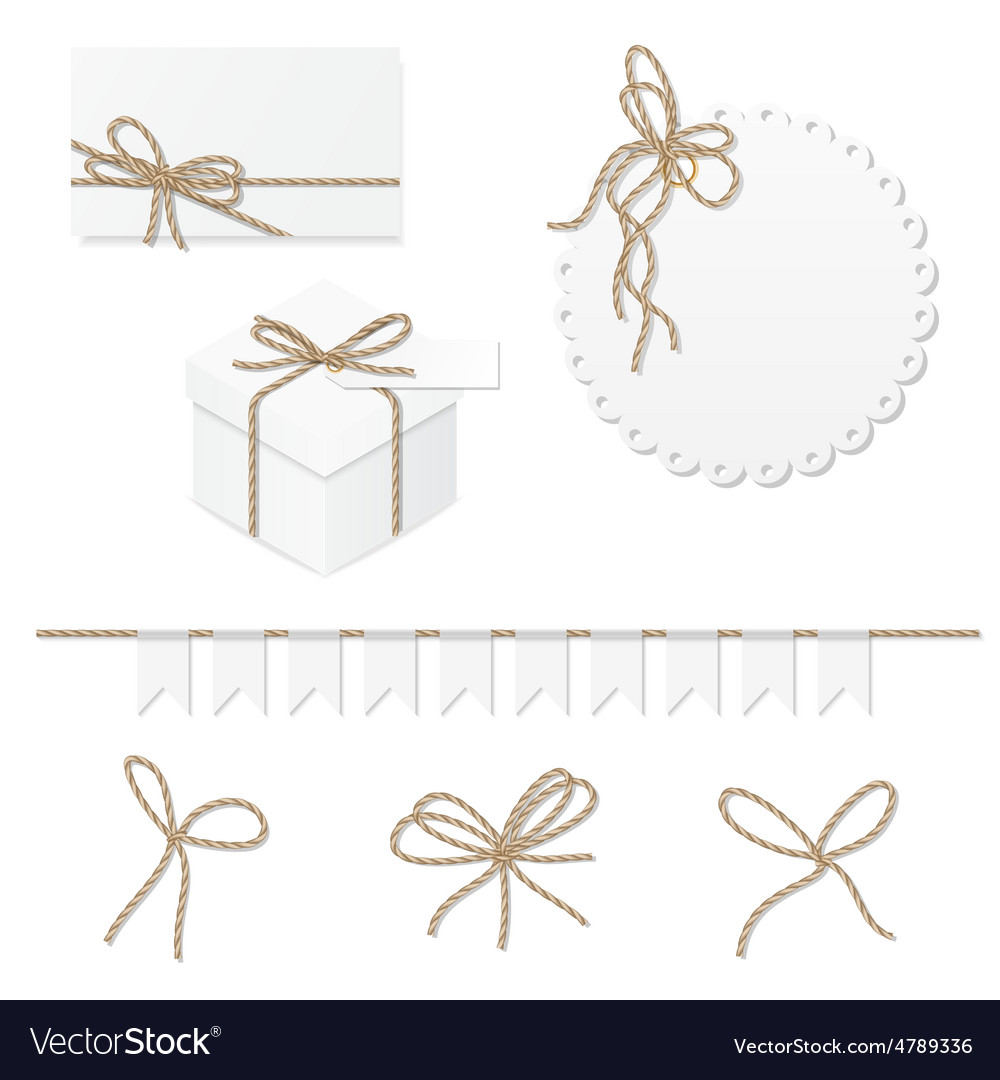 Celebration set with rope bows vector