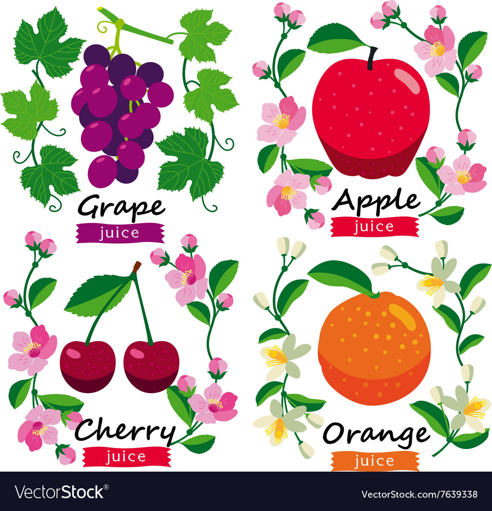 Fruits and flowers set vector