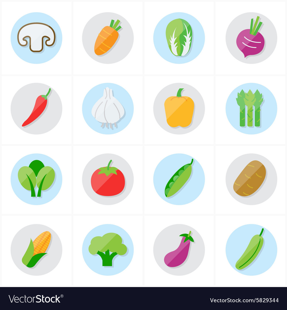 Flat icons vegetables icons vector