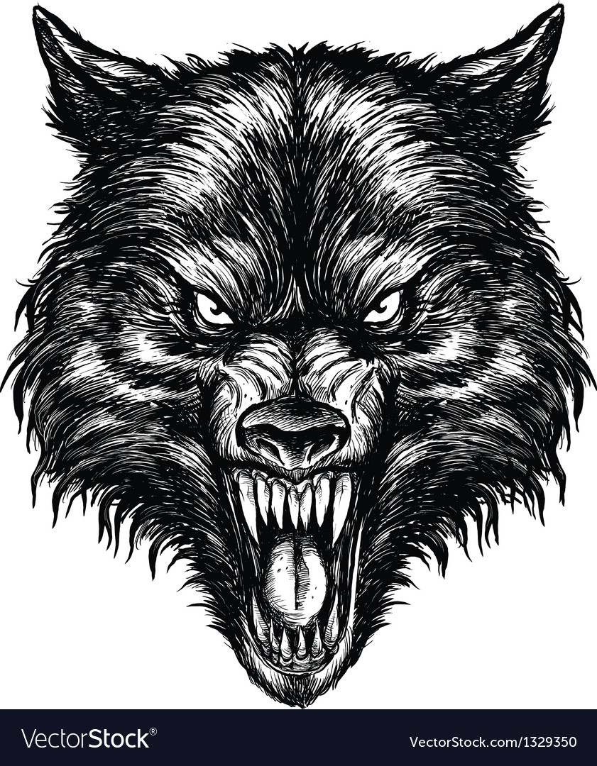 Hand drawn wolf linework vector
