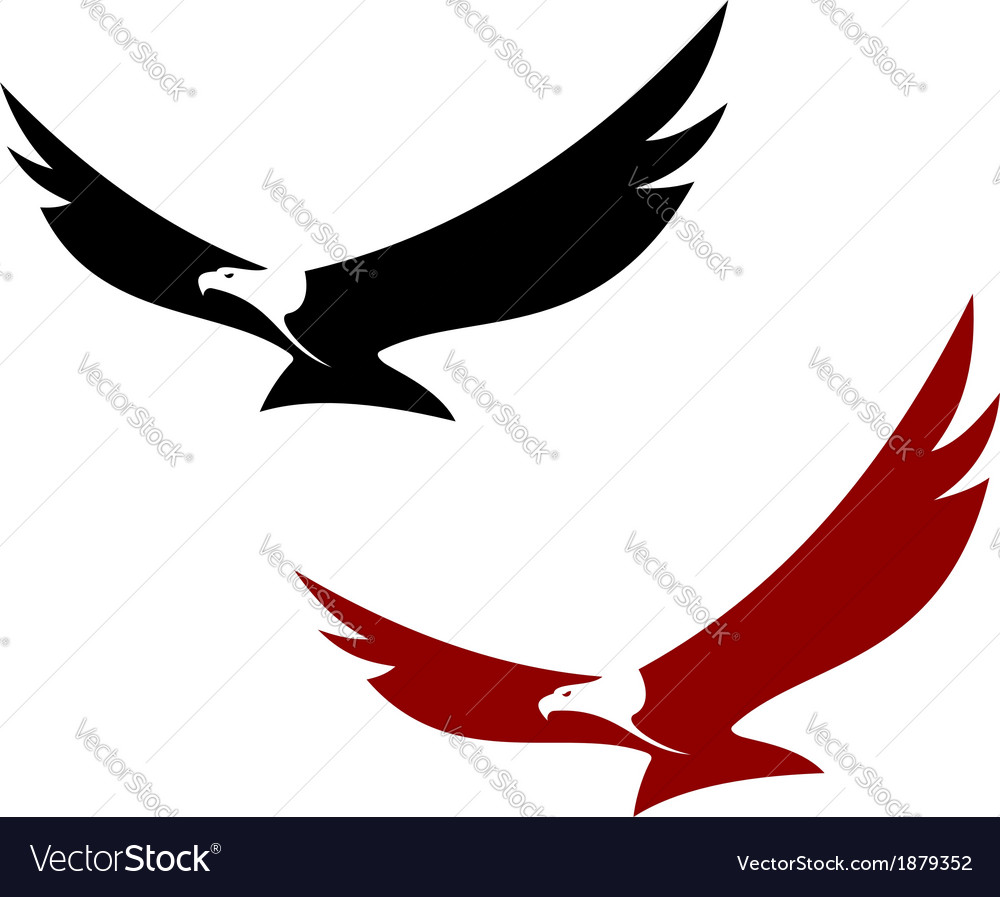 Graceful soaring eagle vector