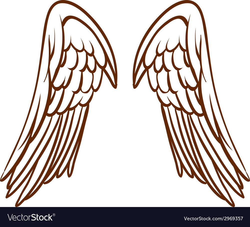 A simple sketch of an angels wings vector