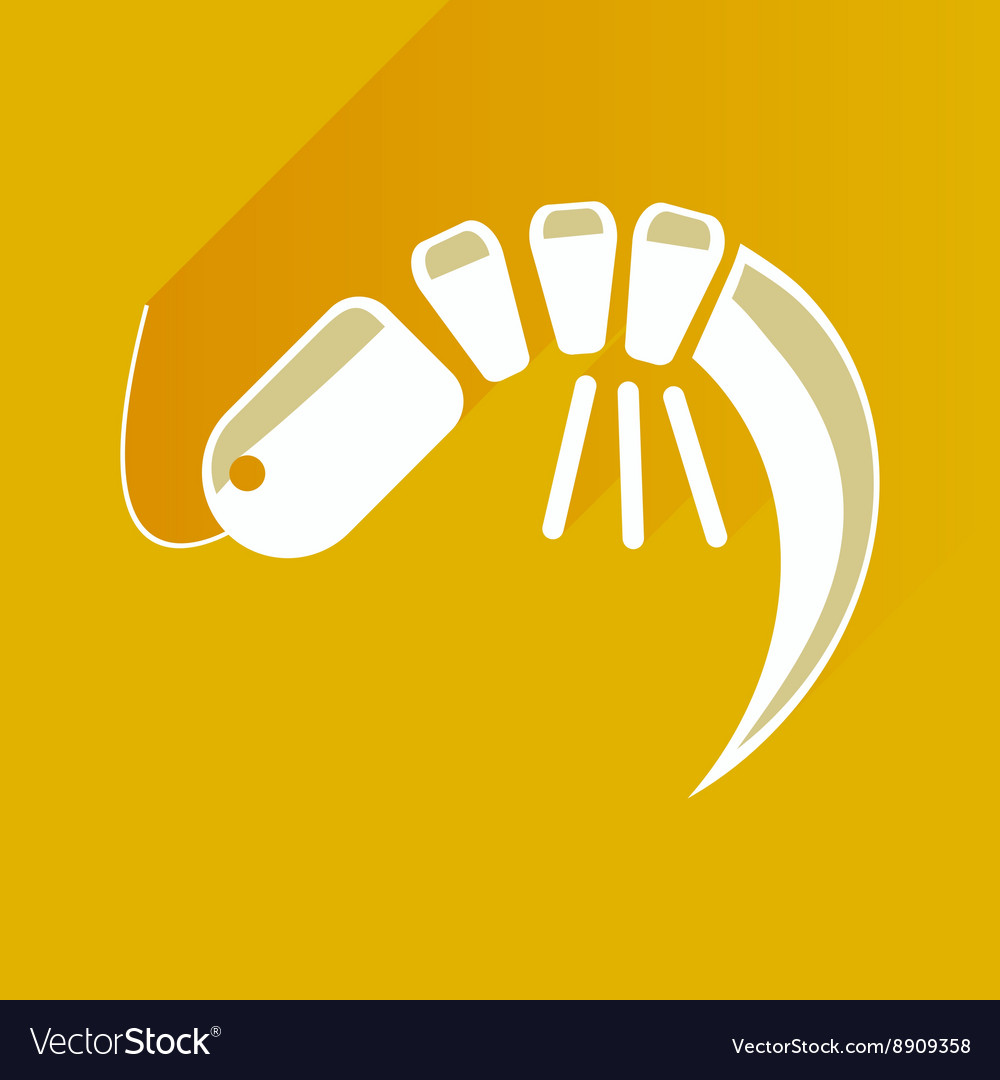 Flat with shadow icon shrimp on stylish background vector