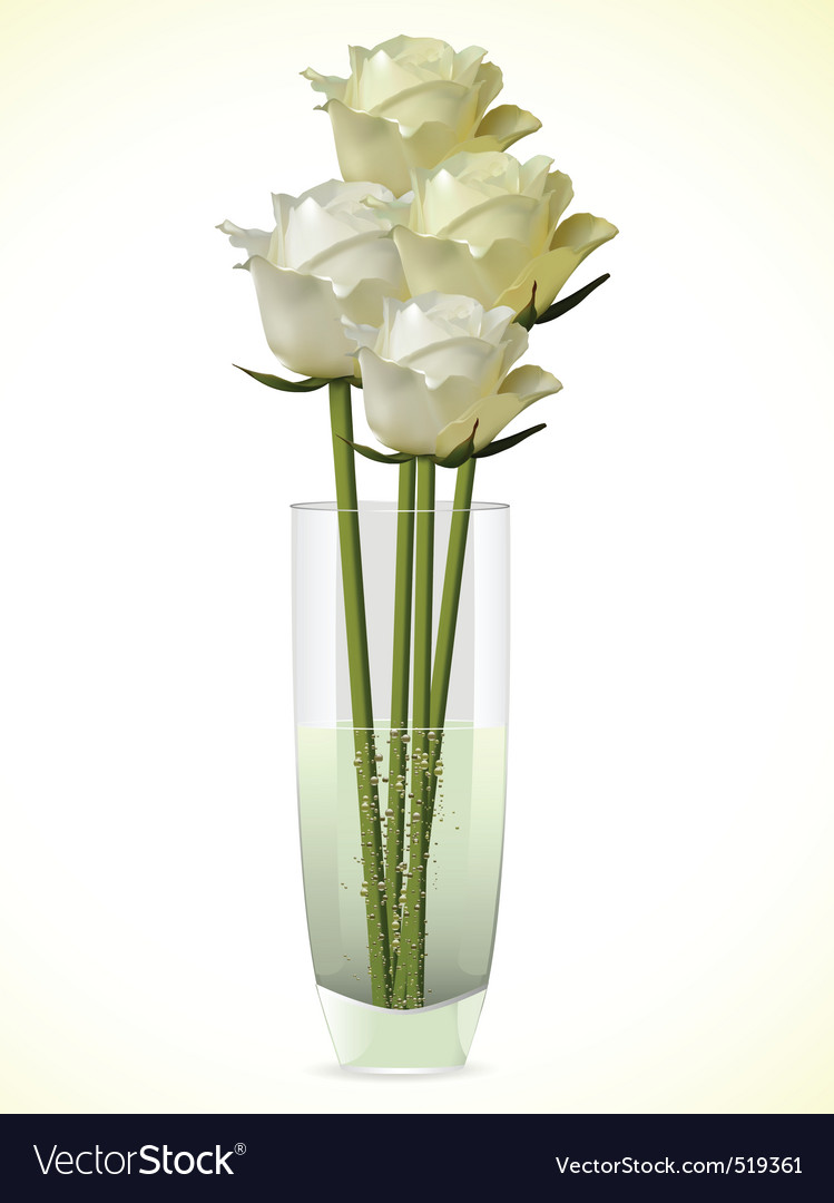 White and ivory roses in a vase vector