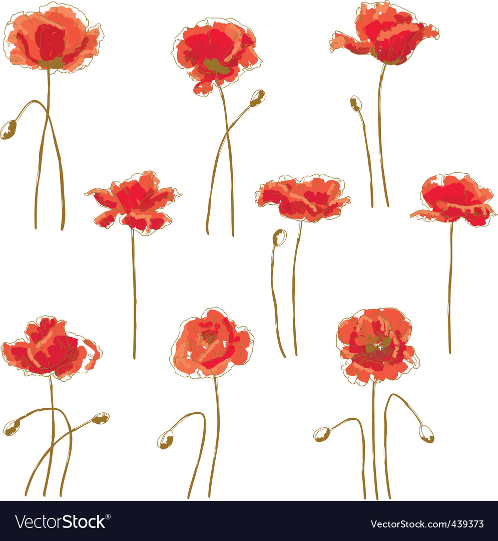 Set of 9 poppy flower vector