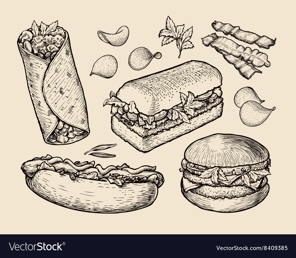 Fast food hand drawn cheeseburger burritos ham vector