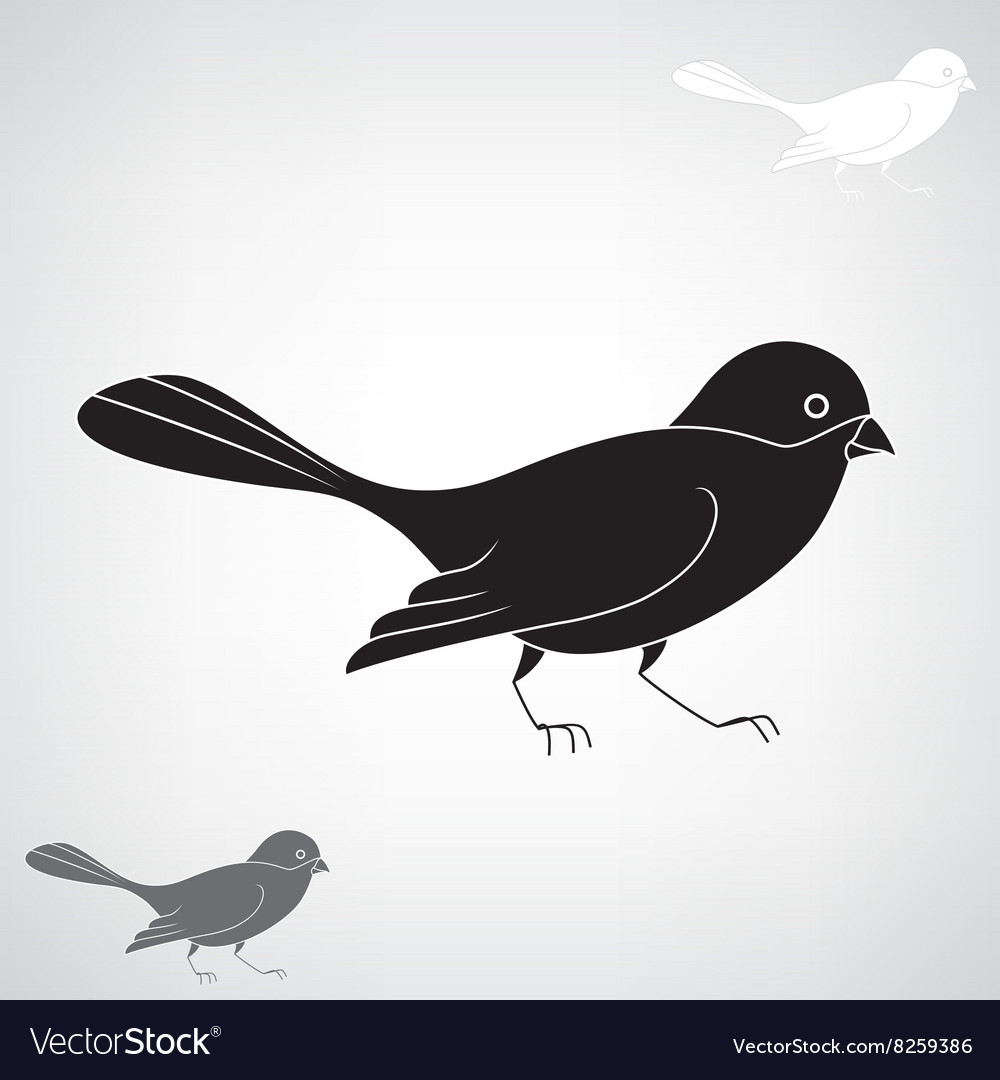 Black silhouette of a bird vector