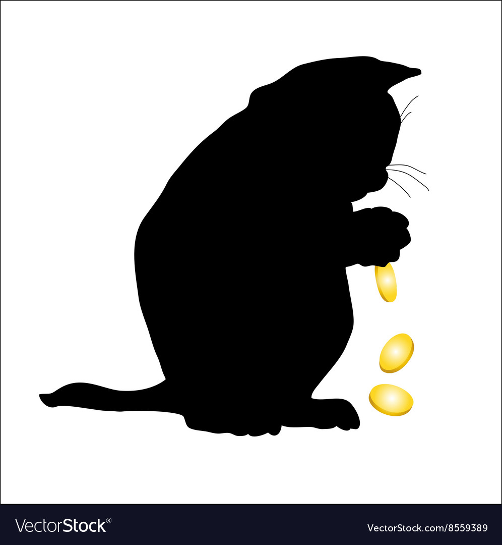 Cat cries over money a vector