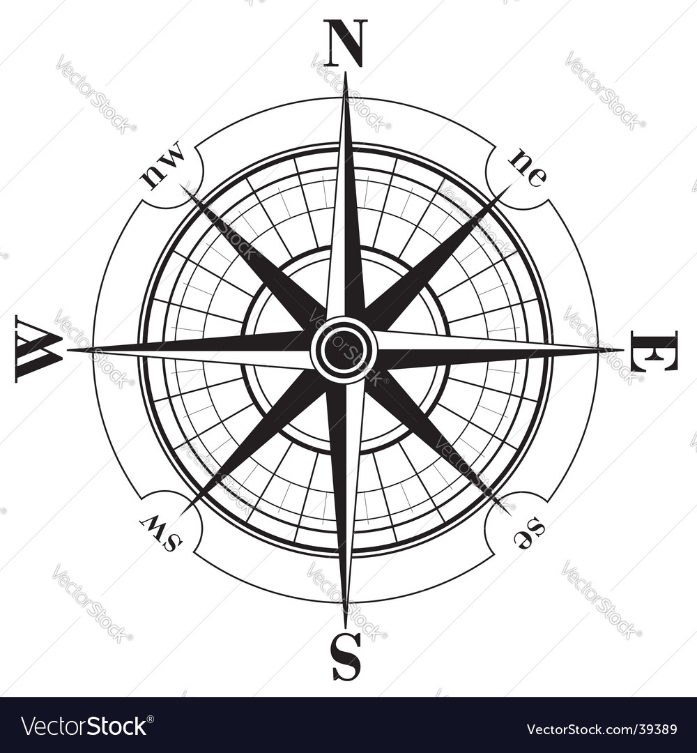 Compass rose vector