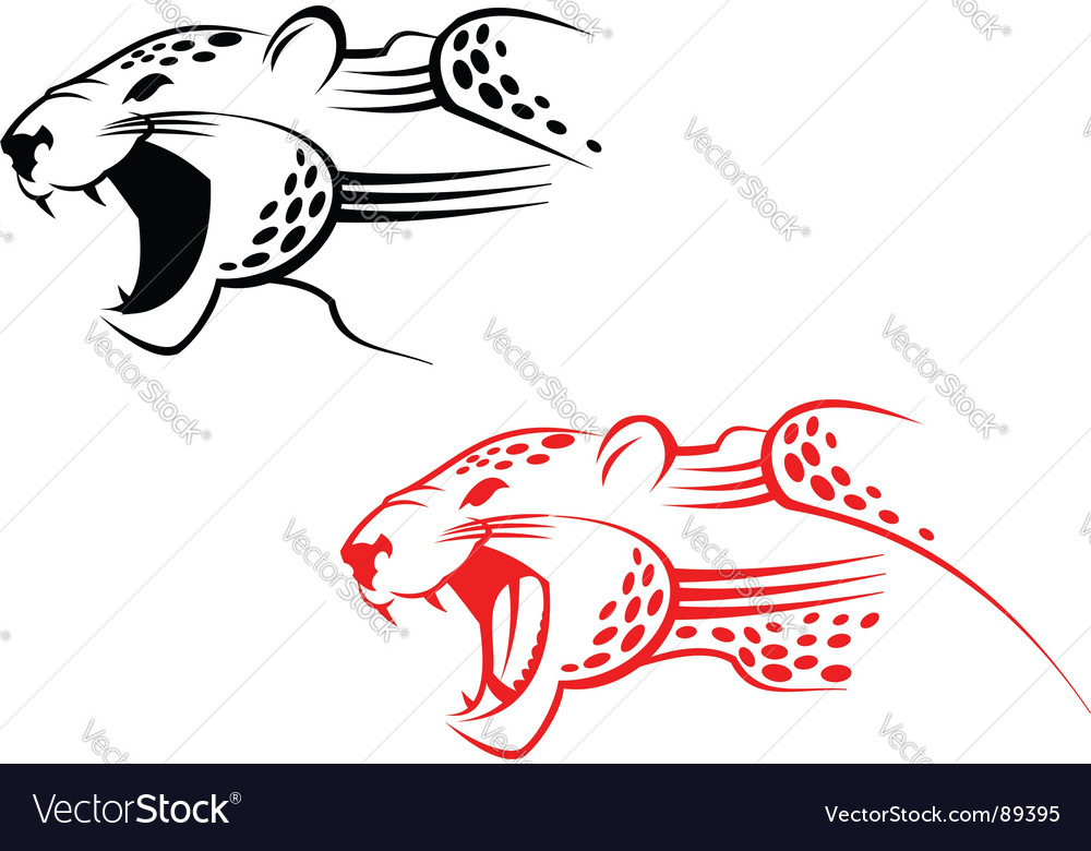 Wildcat sign vector