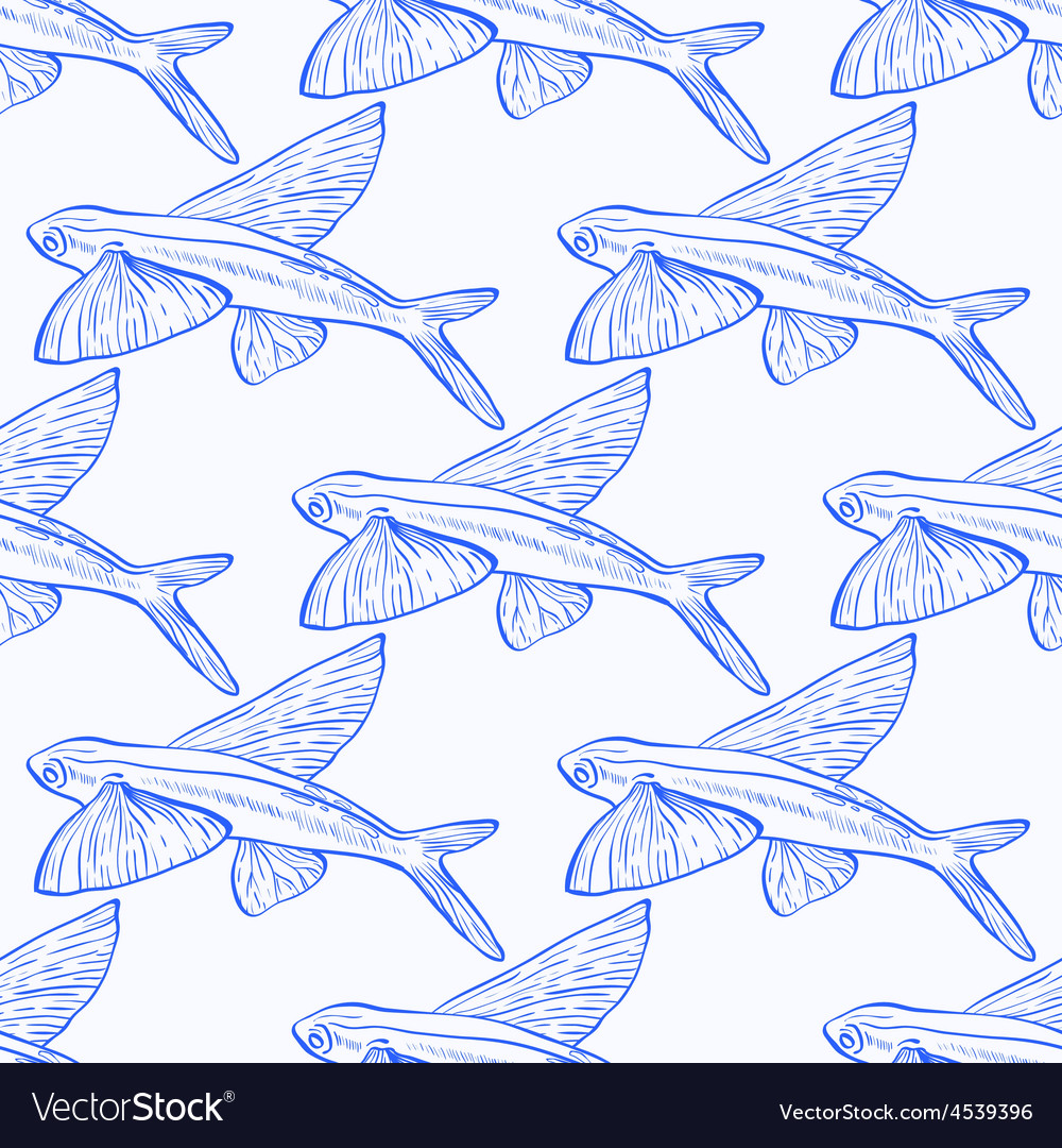 Flying fish 1 vector