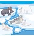 Cute Cartoon Nort Animals vector image