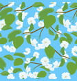 blossoming apple tree spring twig pattern on blue vector image