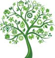 Eco tree vector image