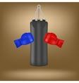 Boxing Gloves and Black Sport Bag vector image